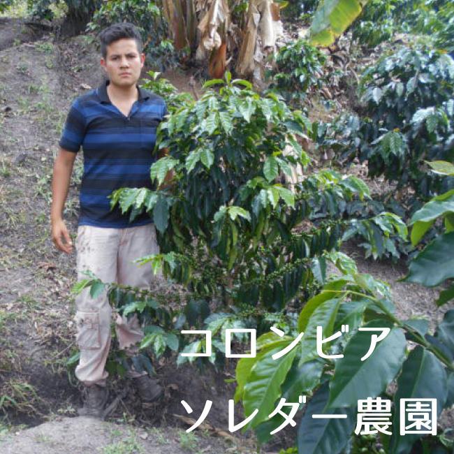 コロンビア ソレダー農園 100g