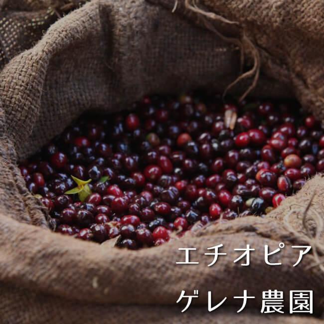 エチオピア ゲレナ農園100g
